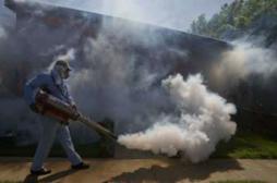 Chikungunya : le nombre de cas a doublé  en 15 jours en Polynésie