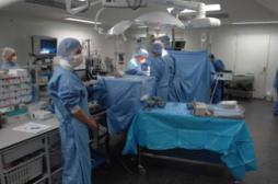 Appendicectomie : quatre fois moins en trente ans