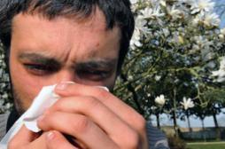Allergies au pollen : la France voit rouge