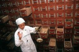 Polyarthrite : une plante chinoise pour booster l'effet des médicaments