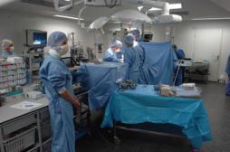 Le nombre d'opérations de l'appendicite divisé par 2 en 15 ans