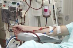 Maladies rénales : dépister tôt pour éviter la dialyse