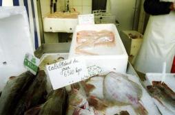 L'huile de poisson bénéfique contre le cancer de la prostate