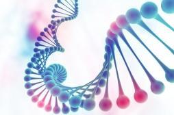 L'ADN circulaire pourrait être la clé du cancer infantile