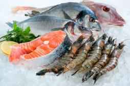 Maladie de Charcot : trop de poisson associé à un risque accru