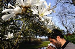 Allergies : les pollens de graminées toujours très présents