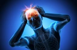 Traumatisme crânien : et si l'on pouvait mieux réparer les blessures du cerveau ?