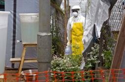 Ebola : la France va tester une molécule antivirale en Guinée