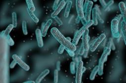 Une nouvelle molécule tue cinq super-bactéries résistantes aux médicaments