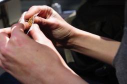 Alcool, cannabis : les étudiants cumulent les addictions