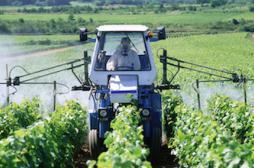 Pesticides: les effets réels sur la santé