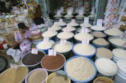 Maladie coeliaque : attention à l'arsenic dans le riz