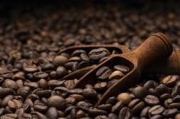 Boire du café réduit le risque de cancer de la prostate