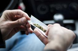 Cannabis : les Français hostiles à la dépénalisation