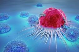 Cancer : un nouveau médicament cible plusieurs types de tumeurs