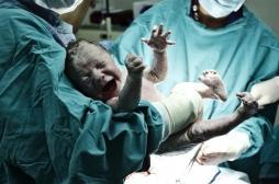 Naissances par césarienne : des bactéries pathogènes dans le microbiote des bébés