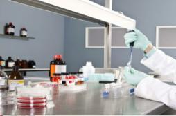 Polémique autour d'un virus mortel et invincible créé en laboratoire
