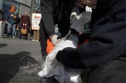 Guerres : des médecins américains accusés de torture