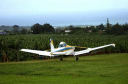 Pesticides : la hausse des taux inquiète les associations