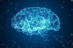 Anxiété : le stress chronique est néfaste pour le cerveau