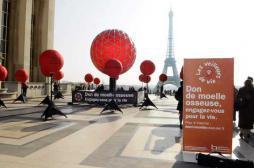 Don de moelle osseuse : la France a besoin d'hommes jeunes