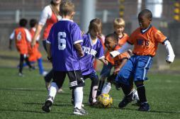 8 enfants sur dix souffrant d'allergies respiratoires font du sport