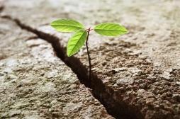 Campagnes de prévention : jouer sur l'espoir, pas seulement sur la peur