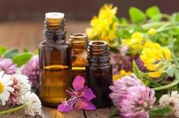 Des huiles essentielles développent les seins chez les hommes