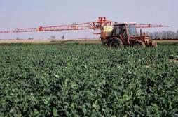 Pesticides: l'alerte des médecins du Limousin