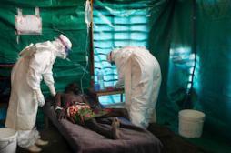 Ebola : sur la piste d'un traitement efficace