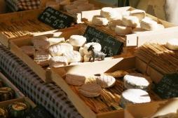 20 cas de toxi-infections à salmonelles: rappel élargi de fromages