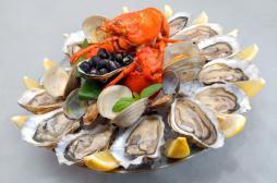 Déclin cognitif : les fruits de mer protègent le cerveau des séniors