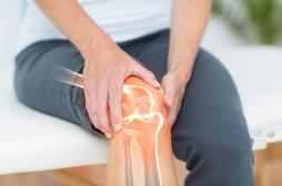 Arthrite du genou : on en sait davantage sur le mystère de la fabella