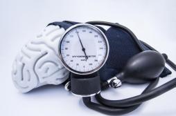 Hypertension : le cerveau, site d'action des nouveaux traitements