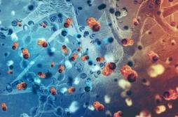 Cancer: le soigner grâce au mécanisme d'autodestruction des cellules