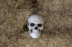 Comment notre cerveau nous empêche de concevoir notre mort mais pas celle des autres
