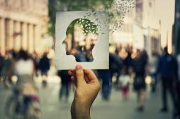 Cerveau : exagérer les différences entre deux souvenirs similaires, pour mieux s'en rappeler
