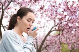 Asthme : une nouvelle protéine à cibler