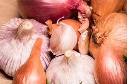 Cancer du sein : manger de l'ail et des oignons pour diminuer les risques ?