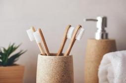 Votre brosse à dents est-elle bonne pour votre santé et la planète?