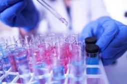 Cristoli, ce nouveau virus découvert en Ile-de-France