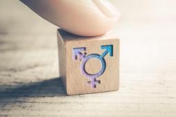 Greffe de l'utérus : ce qu'en pensent les femmes transgenres