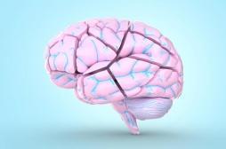 Recherche sur Alzheimer : et si vous faisiez un