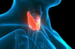 Cancer de la thyroïde: Muriel Pénicaud en a souffert pendant qu'elle était ministre