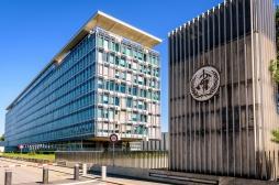 Covid-19 : réunion d'urgence à l'OMS pour faire le point sur les variants