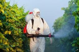 Pesticides : l'efficacité des protections des agriculteurs remise en question