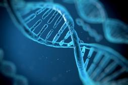 Syndrome Gilles de la Tourette : des centaines de variations génétiques impliquées