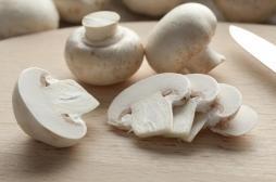 Cancer de la prostate: un composé des champignons de Paris pourrait ralentir sa progression