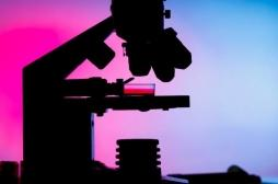 Myélome : la maladie résiduelle minime transforme le traitement