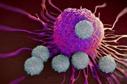 Cancer : les cellules immunitaires modifiées pour combattre les tumeurs